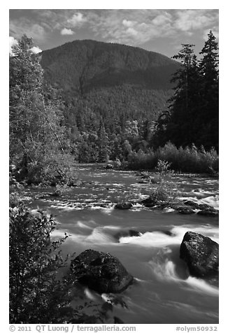 Elwha River. Olympic National Park (black and white)