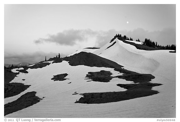 Neve on hill at dusk near Obstruction Point. Olympic National Park (black and white)