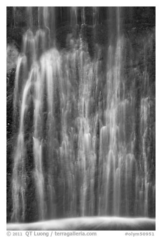 Multiple water channels, bottom of Marymere Fall. Olympic National Park (black and white)