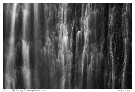 Water curtain, Marymere Fall. Olympic National Park (black and white)