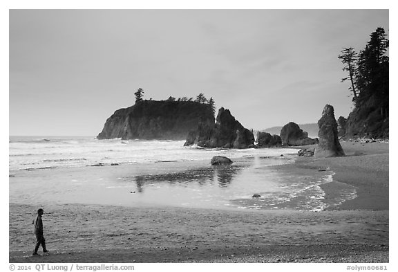 Visitor looking, Ruby Beach. Olympic National Park (black and white)