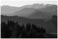 Olympic mountain ridges from Hurricane Hill, early morning. Olympic National Park ( black and white)