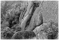 Rhyolite Cliff. Pinnacles National Park ( black and white)