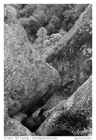 Rock finns below Condor Gulch overlook. Pinnacles National Park (black and white)