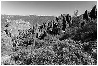 Chaparral and spires. Pinnacles National Park, California, USA. (black and white)