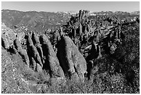 Monolith and colonnades. Pinnacles National Park, California, USA. (black and white)