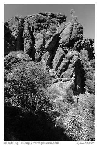Cliffs of reddish rock. Pinnacles National Park (black and white)
