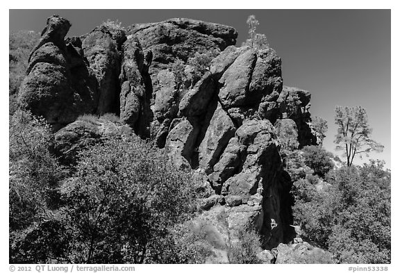 Cliff, Bear Gulch. Pinnacles National Park (black and white)