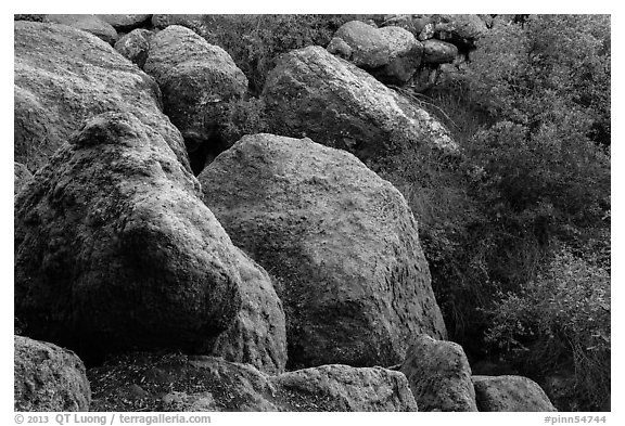 Boulders and trees in Bear Gulch. Pinnacles National Park (black and white)
