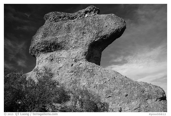 Anvil rock formation. Pinnacles National Park (black and white)