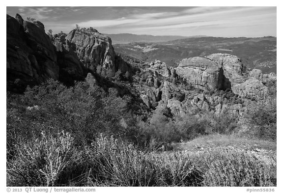 West side rock formations and spring wildflowers. Pinnacles National Park (black and white)