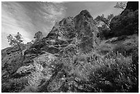 Lupine and rock towers in Juniper Canyon. Pinnacles National Park, California, USA. (black and white)