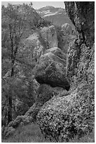 Andesite outcrops. Pinnacles National Park, California, USA. (black and white)