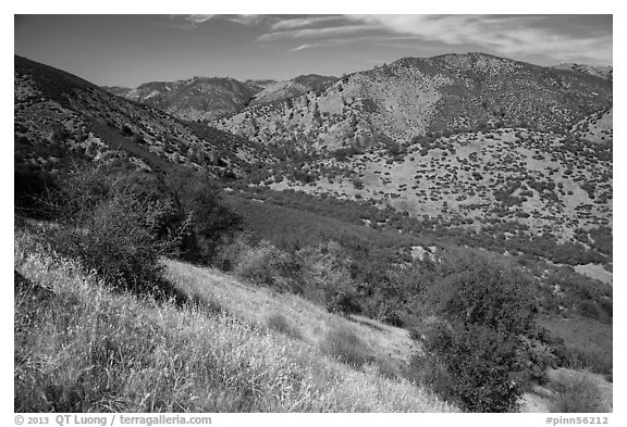 Valley, South Wilderness. Pinnacles National Park (black and white)