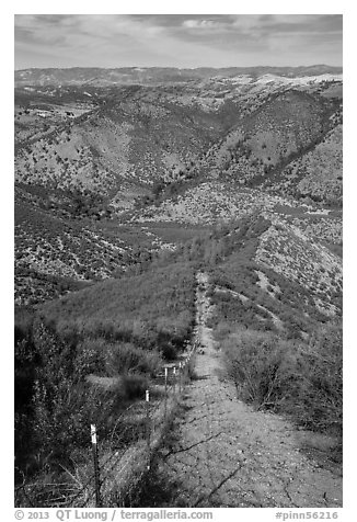 Looking down pig exclusion fence. Pinnacles National Park (black and white)
