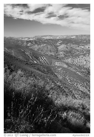 Chaparal-covered hills. Pinnacles National Park (black and white)