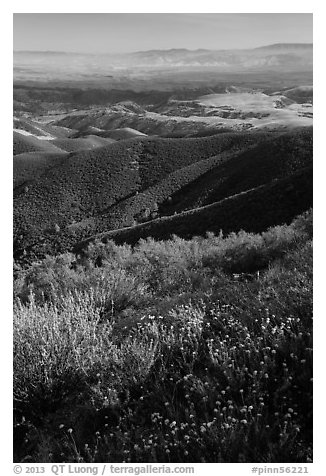 View from South Chalone Peak with wildflowers. Pinnacles National Park (black and white)