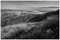 Wildflowers and Salinas Valley. Pinnacles National Park, California, USA. (black and white)