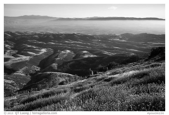 Grasses, hills, and Salinas Valley. Pinnacles National Park (black and white)