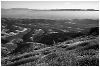 Grasses, hills, and Salinas Valley. Pinnacles National Park, California, USA. (black and white)