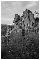 Shrubs and rock towers, autumn sunset. Pinnacles National Park ( black and white)