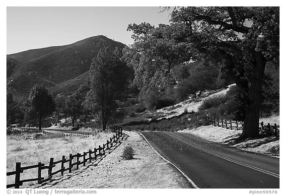Bear Valley road in autumn. Pinnacles National Park (black and white)