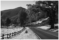 Bear Valley road in autumn. Pinnacles National Park ( black and white)