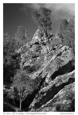 Looking up rock gully. Pinnacles National Park (black and white)