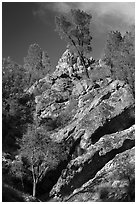 Looking up rock gully. Pinnacles National Park ( black and white)
