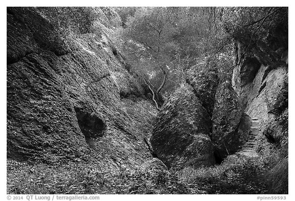 Balconies Cave trail. Pinnacles National Park (black and white)