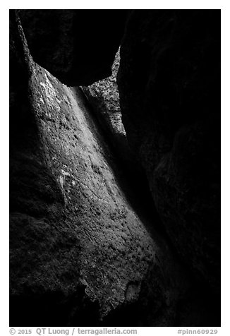 Mossy slab, Bear Gulch Lower Cave. Pinnacles National Park (black and white)