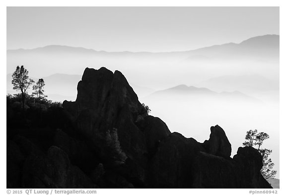 Silhouetted pinnacles and trees, foggy mountains. Pinnacles National Park (black and white)