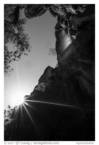 Sun and Moses Spring waterfall, looking up. Pinnacles National Park (black and white)