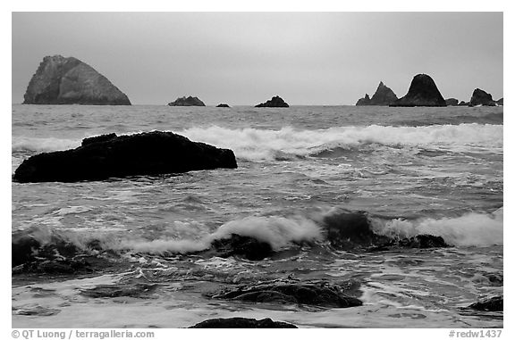 Seastacks and surf in foggy weather, Hidden Beach. Redwood National Park (black and white)