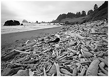 Driftwood, Hidden Beach. Redwood National Park, California, USA. (black and white)