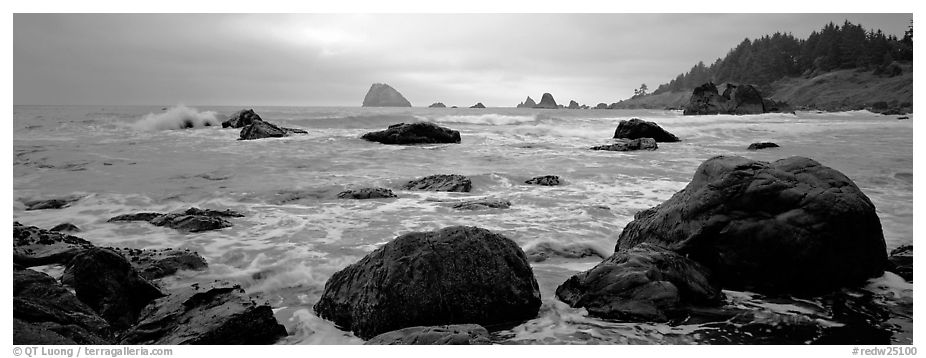 Misty seascape with boulders. Redwood National Park (black and white)