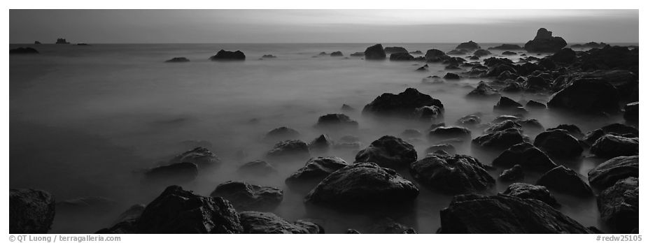 Ethereal ocean motion at dusk. Redwood National Park (black and white)
