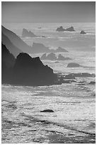 Ragged coastline near Enderts Beach. Redwood National Park ( black and white)