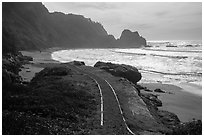Trail and Enderts Beach. Redwood National Park ( black and white)