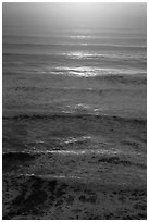 Waves lit by setting sun from above. Redwood National Park ( black and white)