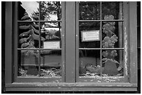 Prairie and forest, Prairie Creek Redwoods Visitor Center window reflexion. Redwood National Park ( black and white)