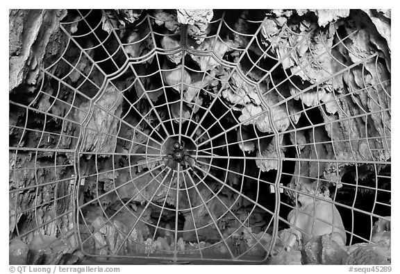 Spiderweb-like gate closing  Crystal Cave. Sequoia National Park (black and white)