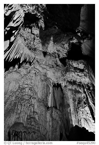 Curtain of icicle-like stalactites, Crystal Cave. Sequoia National Park (black and white)