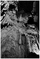 Curtain of icicle-like stalactites, Crystal Cave. Sequoia National Park, California, USA. (black and white)