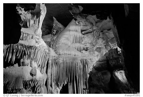 Ornate calcite stalactites, Crystal Cave. Sequoia National Park (black and white)