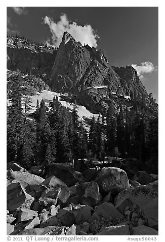 The Watchtower. Sequoia National Park (black and white)