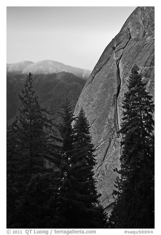 Forest and base of Moro Rock at dawn. Sequoia National Park (black and white)