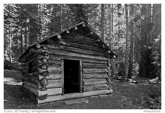 Squatters Cabin. Sequoia National Park (black and white)