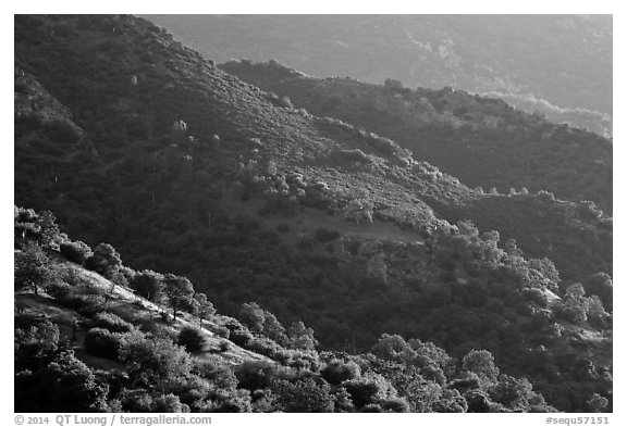 Hill ridges. Sequoia National Park (black and white)