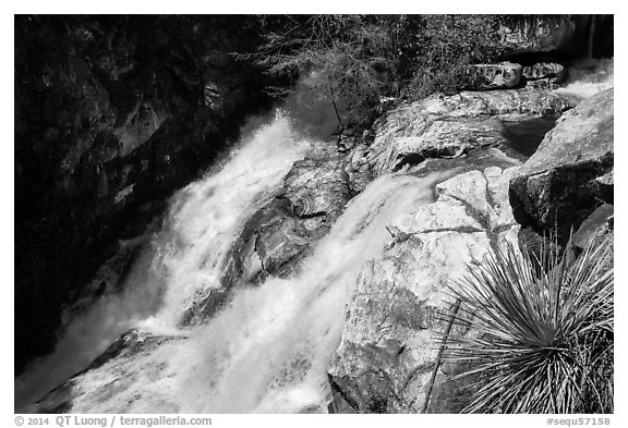 Lower Marble Fall. Sequoia National Park (black and white)